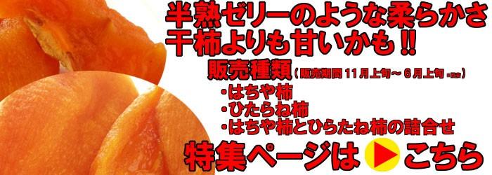 あんぽ柿特集ページはこちら