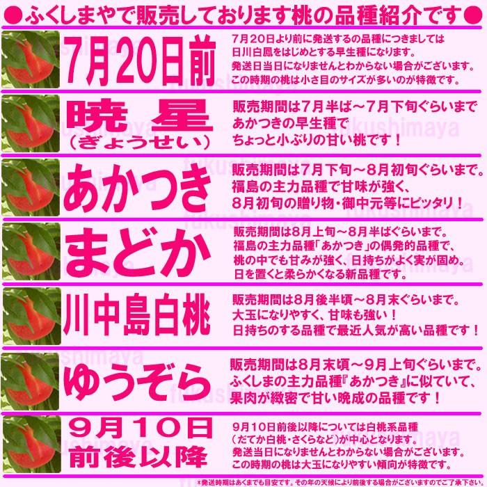 ふくしまやで販売しております桃の品種紹介です暁星⇒販売期間は7月下旬から7月末ぐらい。あかつきの早生種でちょっと小ぶりの甘い桃ですあかつき⇒販売期間は8月上旬から8月15日ぐらい。福島の主力品種で甘味が強くお盆前の贈り物・御中元等に最適ですまどか⇒販売期間8月中旬頃から8月20日ぐらい。福島の主力品種、あかつきの偶発的品種で桃の中でも甘みが強く日持ちがよく実が固め。日を置くとやわらかくなる新品種♪川中島白桃⇒8月20日前後から9月上旬ぐらい。桃の粒が大きく甘みも強い!日持ちのする品種で最近人気が高い品種です!ゆうぞら⇒9月上旬頃から9月10日前後まで。ふくしまの主力品種『あかつき』に似ていて果肉が緻密で甘〜い晩成の品種です*暁星が出荷できるまでの7月下旬位まで及びゆうぞら以降の桃の品種については出荷日によって異なりますので予めご理解の程お願いいたします。