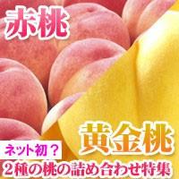 桃・黄桃詰合せセット