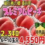 送料無料★『献上桃の郷 桑折町』プレミアムピーチ2.3kg箱(6〜10玉入)