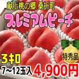 『献上桃の郷 桑折町』プレミアムピーチ3kg箱(7〜12玉入)
