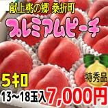 『献上桃の郷 桑折町』プレミアムピーチ5kg箱(12〜18玉入)