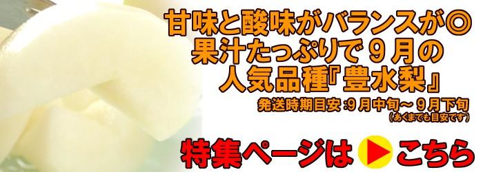 豊水梨、発送時期9月中旬〜9月下旬(あくまでも目安です。)