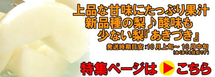 あきづき梨、発送時期10月上旬〜10月中旬(あくまでも目安です。)