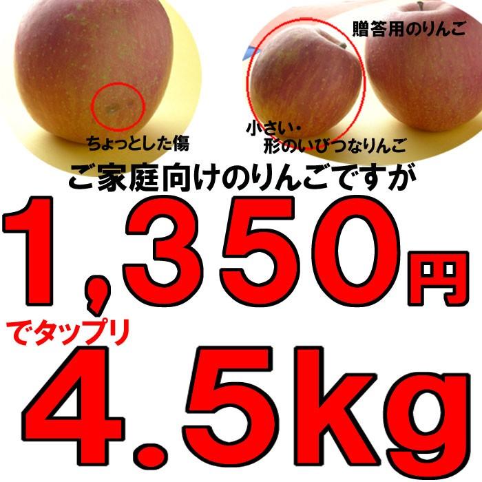 訳アリ1,350円ポッキリ激甘いりんご