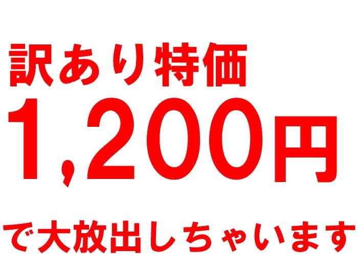 71%オフ、訳あり特価1,200円ポッキリ