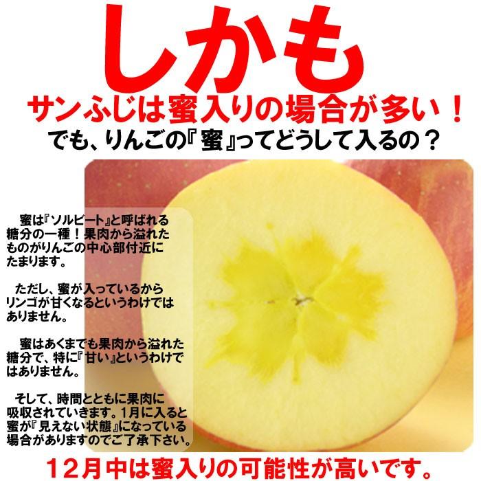 蜜入りりんごの期待大です。12月が蜜入りのりんごになる可能性が高いです。ただし、100%蜜入りを保証することは出来ませんのでご了承下さい。