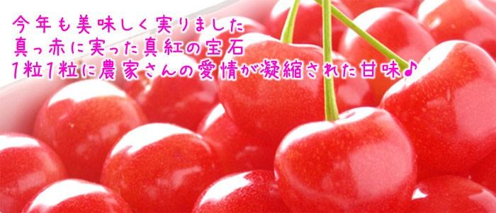 今年も美味しく実りました真っ赤に実った真紅の宝石1粒1粒に農家さんの愛情が凝縮された甘味♪