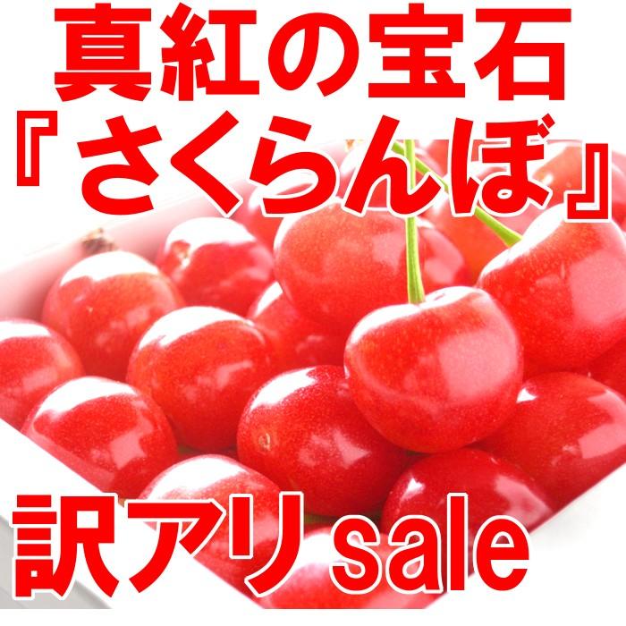 真紅の宝石『さくらんぼ』訳アリsale