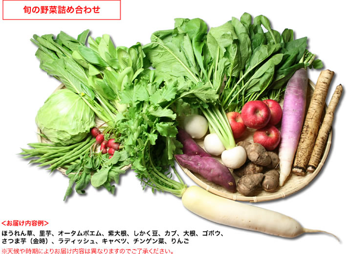 会津旬の野菜詰め合わせ_説明3