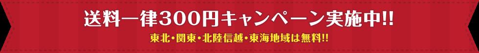 送料300円キャンペーン開催中!