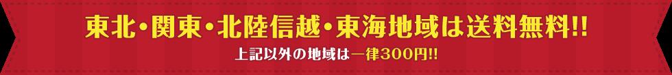 送料無料送料キャンペーン開催中!
