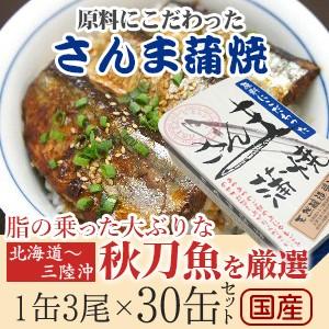 さんま蒲焼き 100g 缶詰 30個