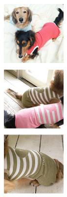犬の服のカット写真 部屋着 (ダックス〜小型犬) width=