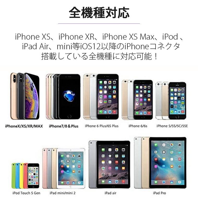 iphone ケーブル 急速充電 0.25m