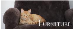 Fur-ctory 家具のページへ