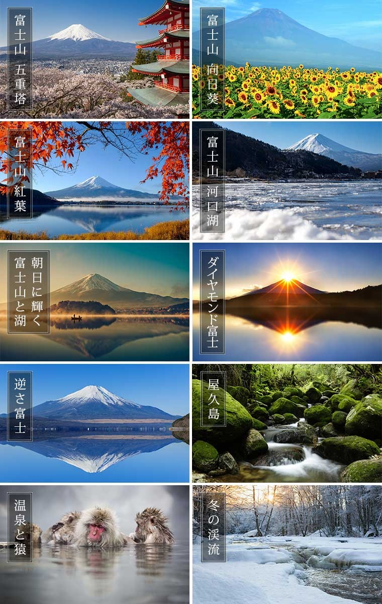 富士山 屋久島
