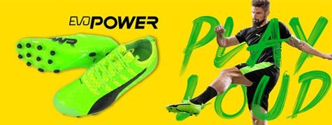 エヴォパワー緑