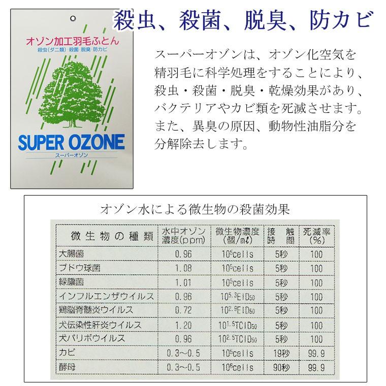 オゾン加工