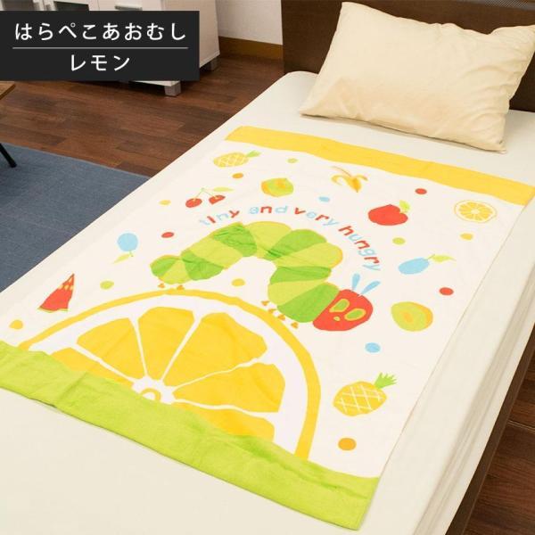 キャラクターお昼寝タオルケット 85×115cm 綿100% 大判バスタオル 洗えるケット|futon|09