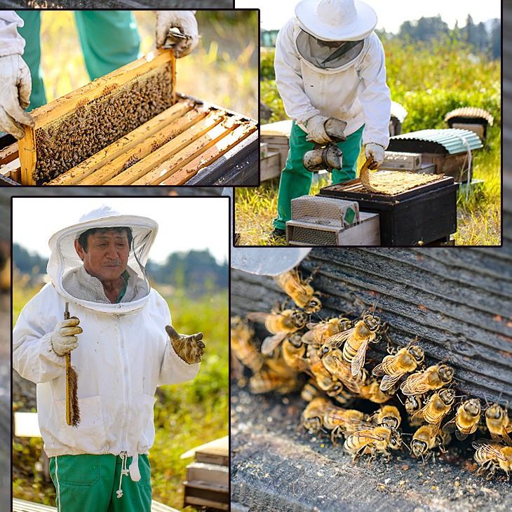 養蜂家星野さん