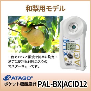 BX/ACID12