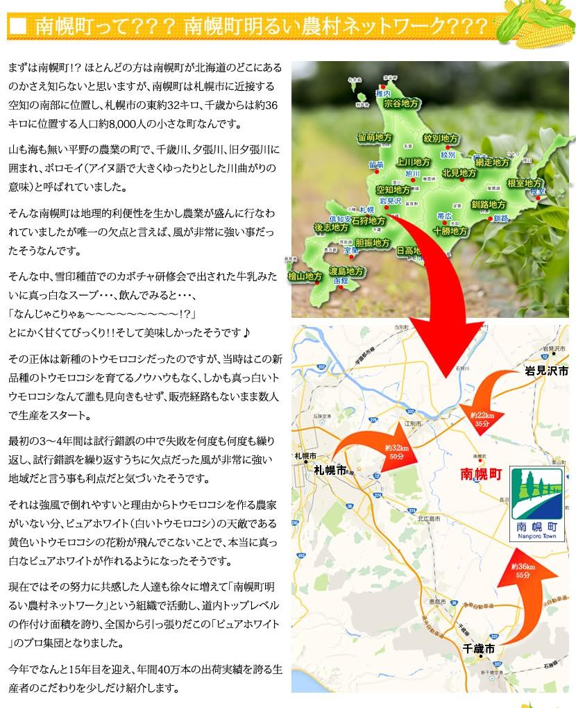 北海道 とうもろこし ピュアホワイトset