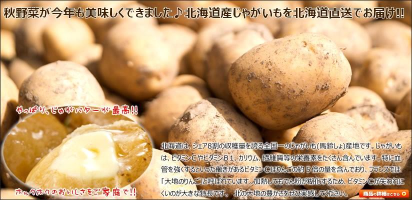 北海道 野菜