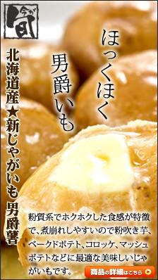北海道産 馬鈴薯 男爵薯
