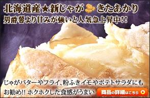 北海道産 馬鈴薯 きたあかり