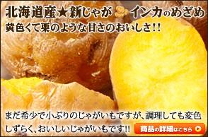 北海道産 馬鈴薯 インカのめざめ