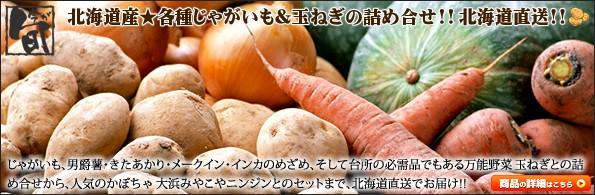 北海道産 馬鈴薯 セット・詰合せ