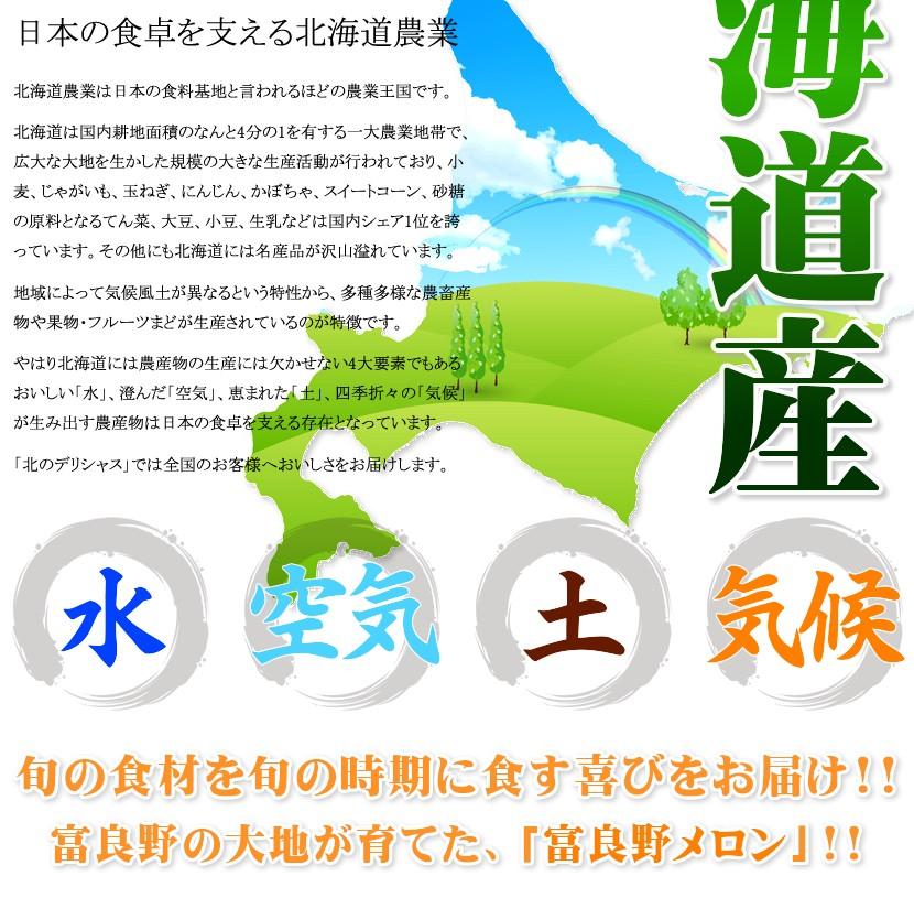 北海道産 富良野メロン