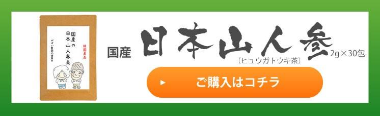 日本山人参茶 2g×30包