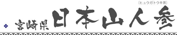 日本山人参(ヒュウガトウキ)