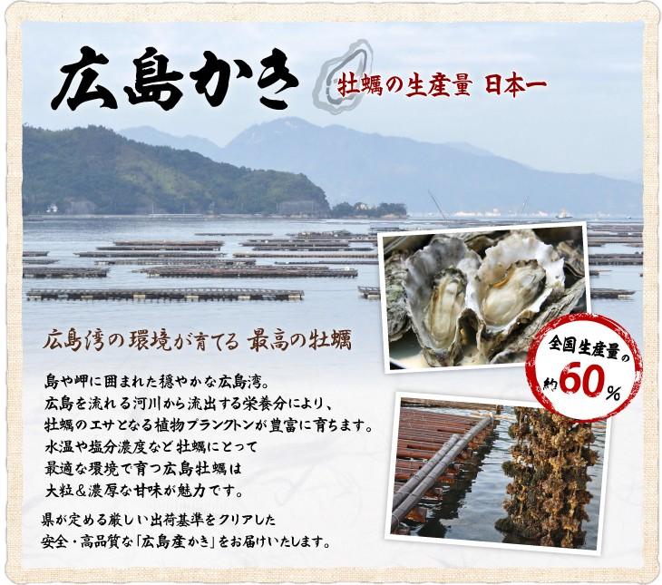 牡蠣の生産量 日本一 広島かき。広島湾の環境が育てる最高峰の牡蠣。島や岬に囲まれた穏やかな広島湾。広島を流れる河川から流出する栄養分により、牡蠣のエサとなる植物プランクトンが豊富に育ちます。水温や塩分濃度など牡蠣にとって最適な環境で育つ広島牡蠣は大粒&濃厚な甘みが魅力です。県が定める厳しい出荷基準をクリアした安全・高品質な「広島産かき」をお届けいたします。