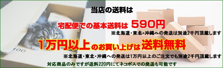 一部地域を除き送料一律490円 8,000円以上送料無料