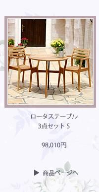 ロータステーブル3点セット S