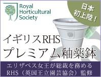 イギリスRHS・プレミアム釉薬鉢