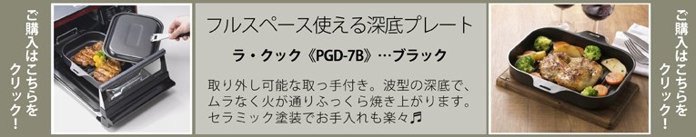 PGD-7B