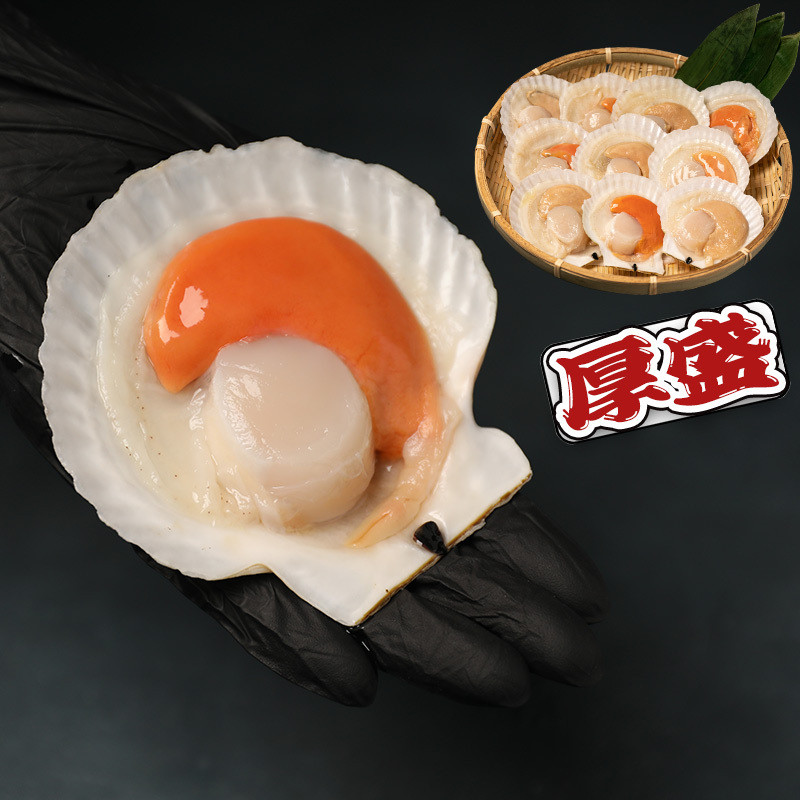 バーベキュー BBQ 肉 訳あり 送料無 牛タン 焼肉 セット ハラミ ロース 牡蠣 牛肉 福袋 5種 選べる 厚盛 あつもり お中元 ギフト お取り寄せ 冷凍 約2kg|geki-niku|21