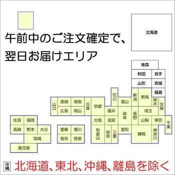 ジェラテリアUNO ジェラート専門店は、あすつく対応。但し、北海道、東北、沖縄を除く