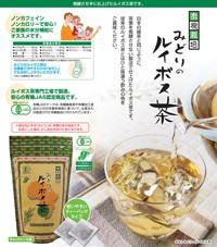 みどりのルイボス茶