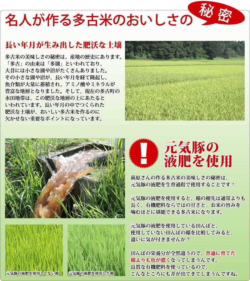 長い年月が生み出した肥沃な土壌と、元気豚の液肥を利用することで