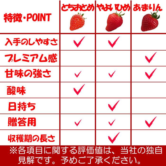 特徴・POINT