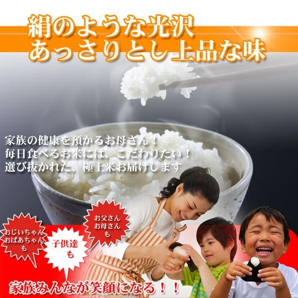 新潟コシヒカリ,ミネラル栽培米は,絹のような光沢とあっさりとした上品な味が特徴です。
