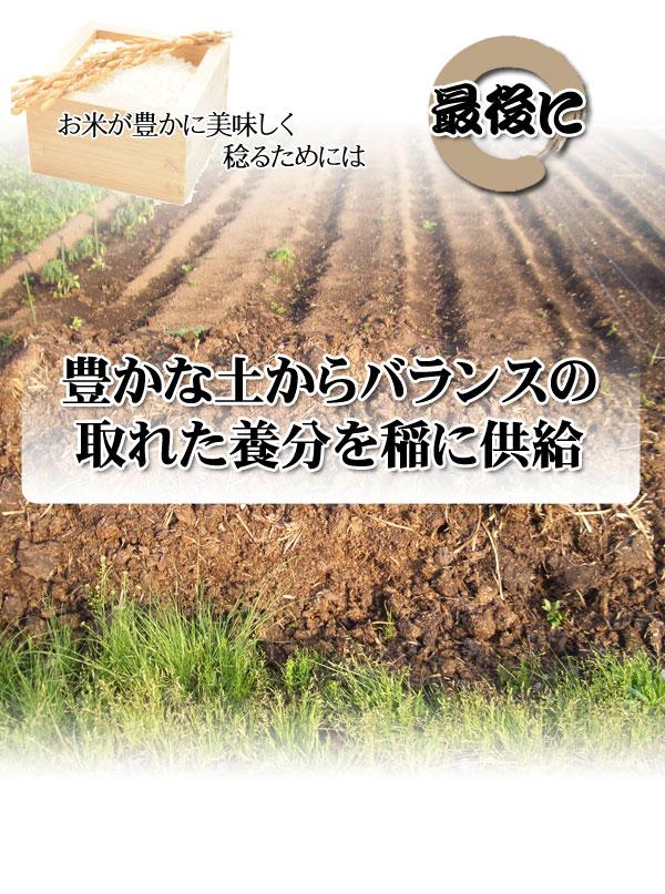 お米が美味しく稔るためには,豊かな土壌からバランスの取れた養分の供給