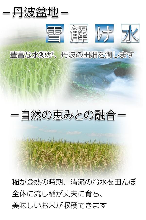 丹波の風土が育てたお米