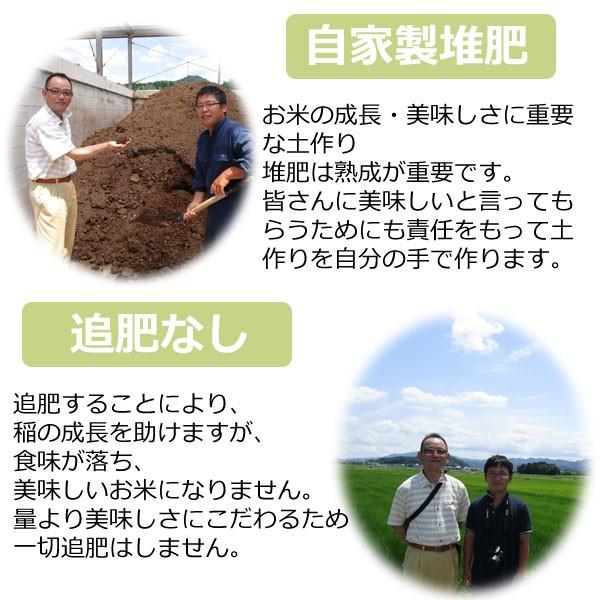 新米27年度産,丹波篠山コシヒカリ,特別栽培米 玄米,減農薬 玄米