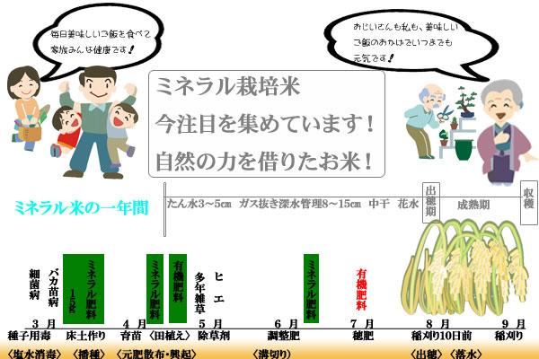 ミネラル栽培米の1年